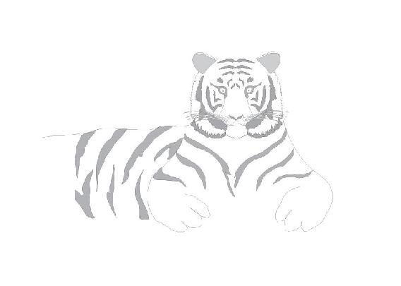 Tiger Zodiac Sign