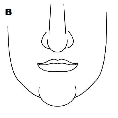 Superb Face Reading Chin Shapes And Personality What Pointed Square Hairstyles For Women Draintrainus