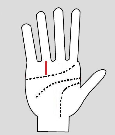 Sun Line Palm Reading | Success Line Meaning | Line of